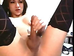Asian ladyboy wanking on cam.