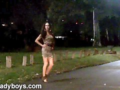 nikki ladyboys real street flashing tits