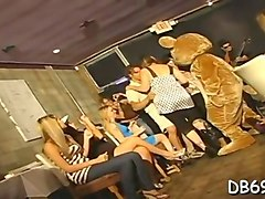 horny dancing bear fucks some clothed sluts at this party